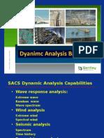 Dynamic Analysis Basic