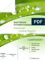 Bacteriasfitopatog 1
