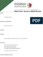 caratula (2)