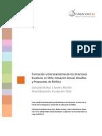 Informe Formacion Entrenamiento de Directores en Chile.pdf753536011
