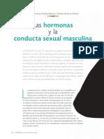 Hormonas Masculin A