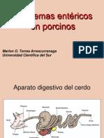 Diarreas en Lechones Lactantes (1)