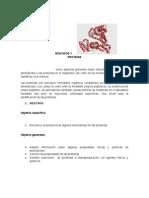 Laboratorio aminoacidos untels
