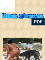 Moments Embarrass Ants