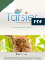 tarsier plan 11015