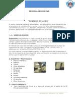 Densidad de Campo(Talelr x)