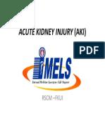 Acute Kidney Injury (Aki) Imels