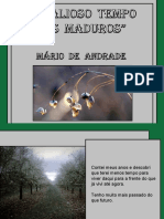 O valioso tempo dos maduros - Mario de Andrade