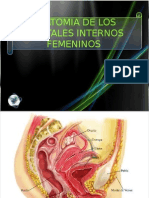 Anatomia de Los Genitales Internos Femeninosfinal