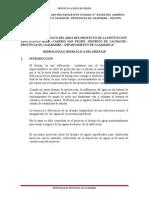 HIDROLOGÍA-HUANICO (1).doc