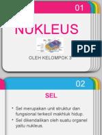 Nukleus kelompok 3