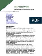 Anorexigenos fitoterápicos - obesidade - saúde - emagrecimento - metabolismo
