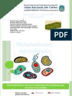 Metabolismo, Fermentación y Lixiviación Microbiana