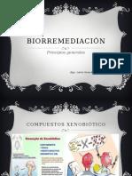 S12.-BIORREMEDIACION-MICROBIANA