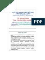 Proceso Penal Acusatorio y Teoria Del Delito