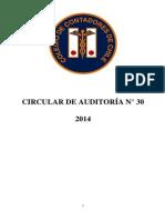 Circular-de-Auditoría-N°-30