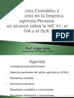 EDGAR ALVA - NIC 41 (Unviersidad Del Pacífico)(1)