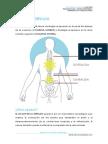ejercicios_dorsolumbares.pdf