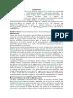 Contingencia y estructuralismo.docx