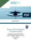 Review of Pelvic Anatomy BMJ
