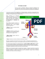 Articles-26627 Recurso Doc