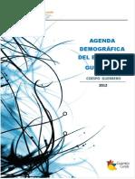 Agenda Demografica Del Estado de Guerrero