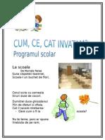 cum_ce_cat_invatam.docx