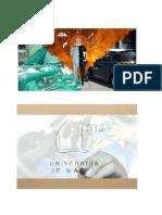 Tfm Presentación PDF