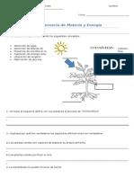 Guia de Transferencia de Energia y Materia