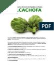 Alcachofa para la retención de líquidos