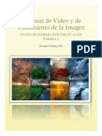 MuñozPlaManuel_SisVideo_Prac1