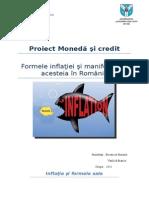 Proiecct Moneda Si Credit 4