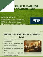 Responsabilidad Civil en Common Law 808
