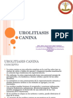 4 Urolitiasis Canina Lgunan