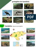 Laminas Cantabria