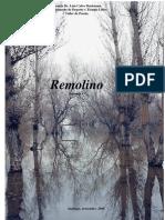 Remolino4