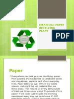 Final Marigold Paper Recylcing Plant