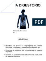 s Digestorio 2013
