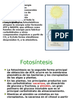 fotosintesis-111107163623-phpapp02.ppt