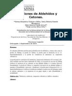 Informe 2. Reacciones de Aldehídos y Cetonas
