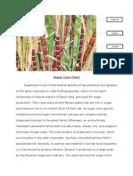Biotic Sugar Cane