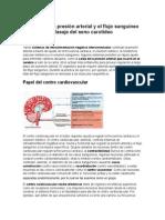 Control de La Presión Arterial y El Flujo Sanguíneo