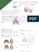 Ft Sistema Respirator i Ocn 9