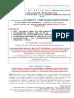 Contaminación Con Plomo - Ambiental y Salud - En Español