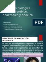 alcantarillados oxidacion biologica