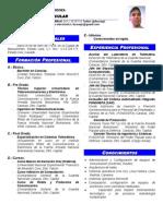 Curriculum Lucena[1]