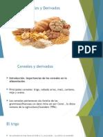 Cereales y Derivados - Leguminosas.