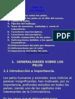 I)[1].4 - LOS PELOS.