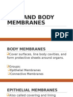 Integumentary System; Skin and Body Membranes