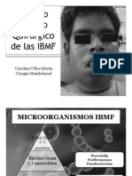 Manejo Médico Quirúrgicode Las IBMF